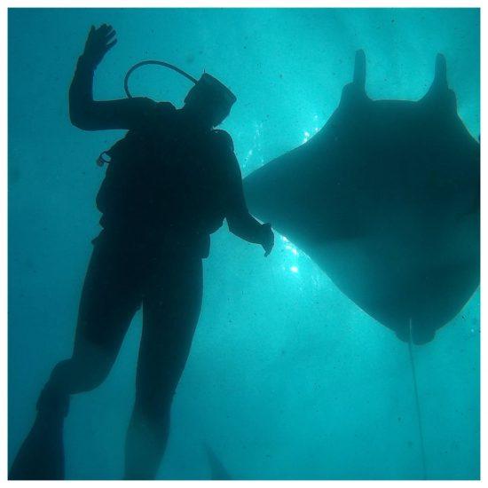 In Indonesien machte ich meinen Tauchschein. Die Unterwasserwelt ist so unglaublich faszinierend. Ich liebe es die Fische zu beobachten. Es ist so eine friedliche Welt. Eigentlich bin ich viel zu selten unter Wasser.