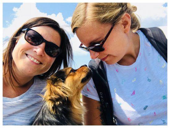 In Montenegro lief uns dieser süße Hund vor's Auto. Er begleitete uns von diesem Tag an während unseres Urlaubes.